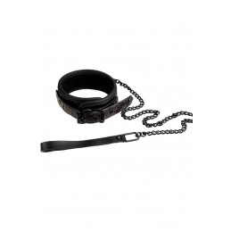 Collar And Leash Collier et...